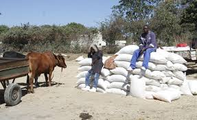 Govt sued in court for banning maize sales