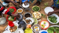 Time running out for Africa to fight hunger