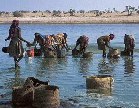 Fights over water worsening Lake Chad conflict
