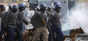 Zimbabwe cops unleash dogs on striking varsity students
