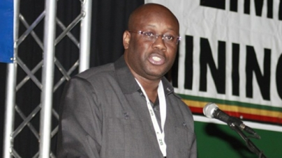 Zimbabwe mineral sector ripe for investments