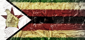 Communist party reacts to Zimbabwe poll delay plans