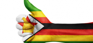 Rights groups accused of Zimbabwe pre-poll propaganda