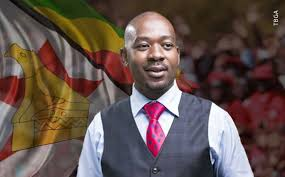 Defeated MDC threatened by yet another split
