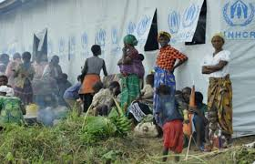 More Congolese refugees expected to flock Zambia
