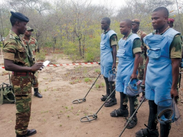 Zimbabwe on track to clear landmines by 2025