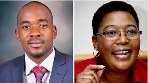 Divided MDC advised to respect courts