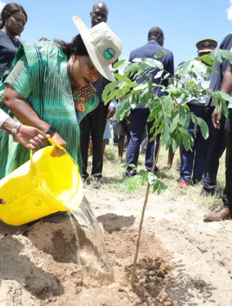 Zaka tree planting scheme to transform locals' lives