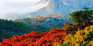Restrictions request to save Zimbabwe tourism sector