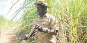 Zimbabwe sugar industry leader Veterai dies