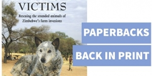 Animals are innocent victims during Zimbabwe farm invasions